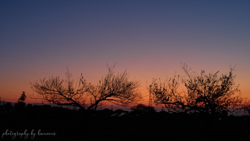 2019/11/01 sunrise